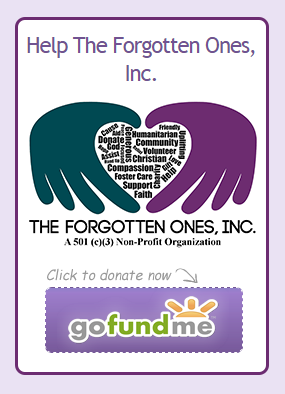 gofundme-tfo-picture